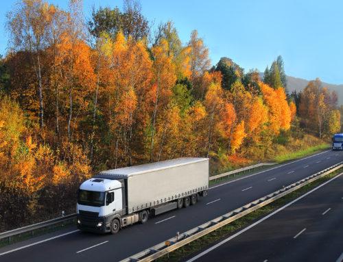 Estamos en el Suplemento de logística y transporte de Diario de Navarra